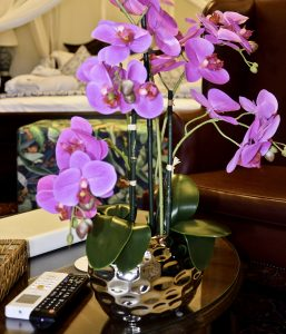 Orchids in Bridal Suite