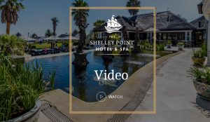 Video Shelley Point